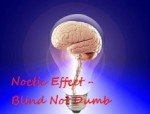 Blind Not Dumb - Brain in Light Bulb